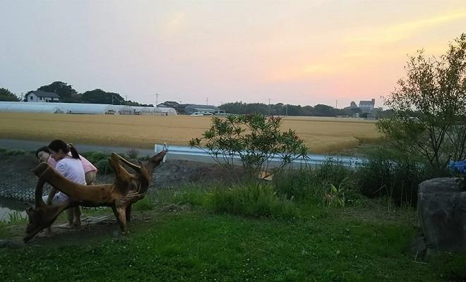 16.3aun_sunset
