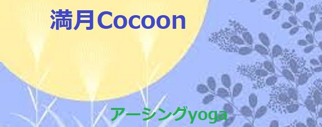 231118cocoon